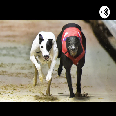 Mark Wallis Greyhounds Podcast