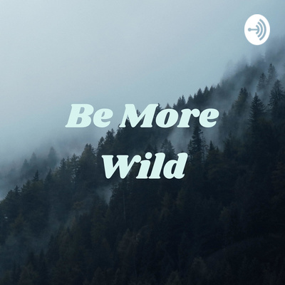 Be More Wild - The Outsider Podcast