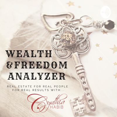 Wealth and Freedom Analyzer