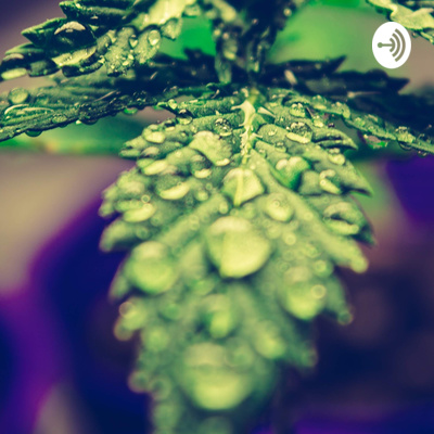 Welcome To The Good Life: The Cannabis Edition Podcast