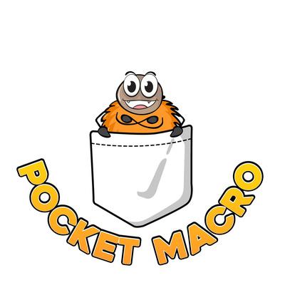 Pocketmacro Talks