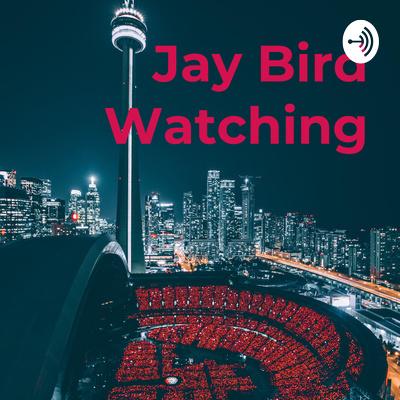 Jay Bird Watching