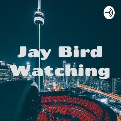 Jay Bird Watching