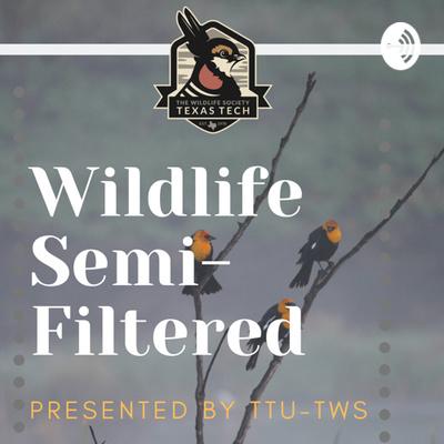 Wildlife SemiFiltered- TTU TWS