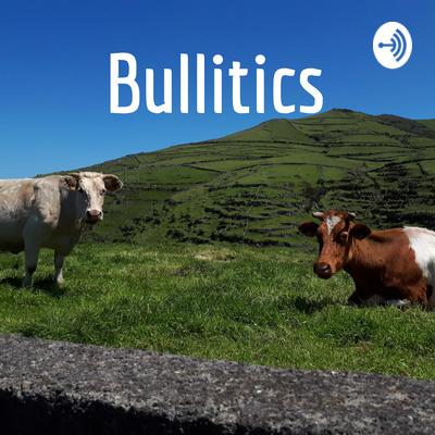 Bullitics