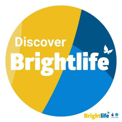 Discover Brightlife