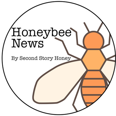 Honeybee News