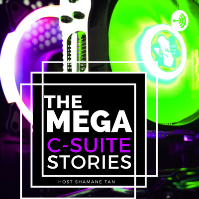 The Mega C-Suite Stories