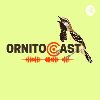 Ornitocast