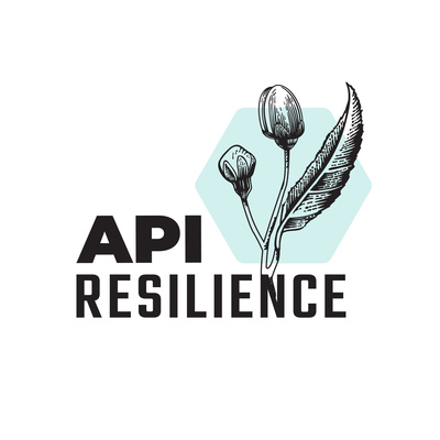 API Resilience