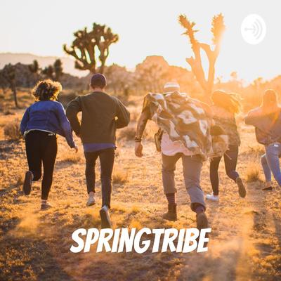 Springtribe - Motivation, Comedy, Marketing