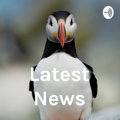 News & Podcasts