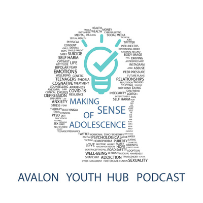 Making sense of Adolescence