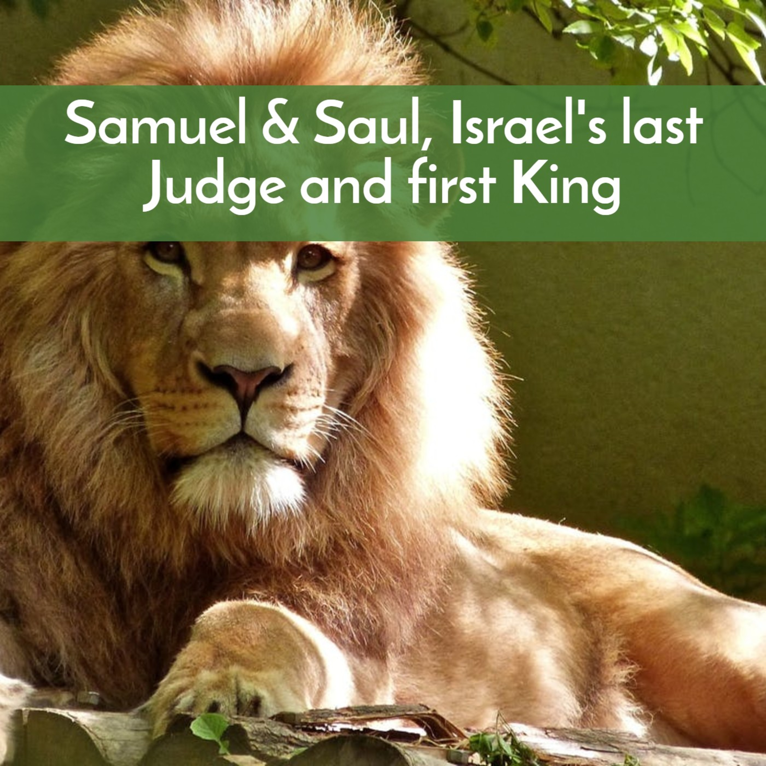 Samuel & Saul--the last Judge and the first King of Israel
