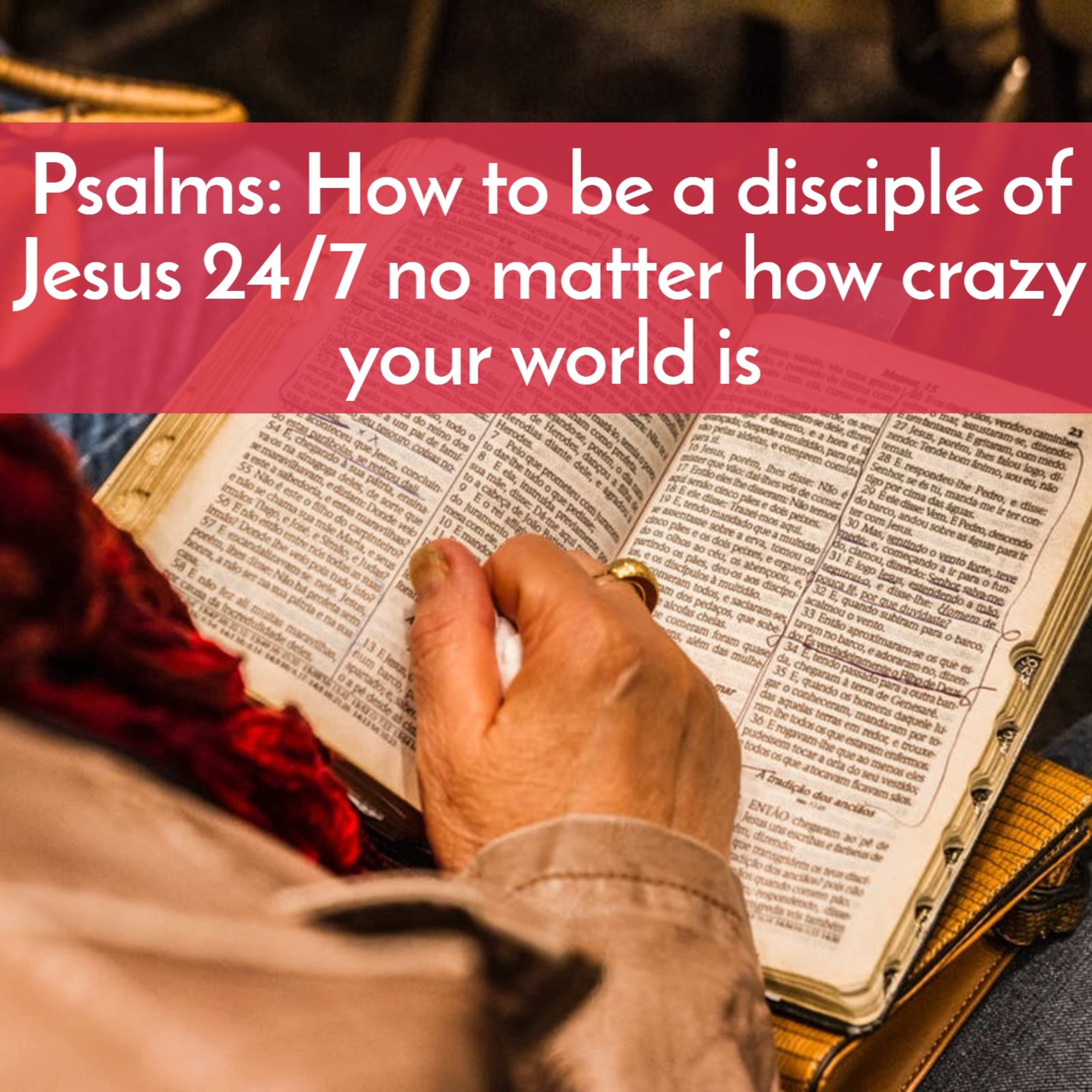 Psalms: How to be a disciple of Jesus 24/7 no matter how crazy your world is