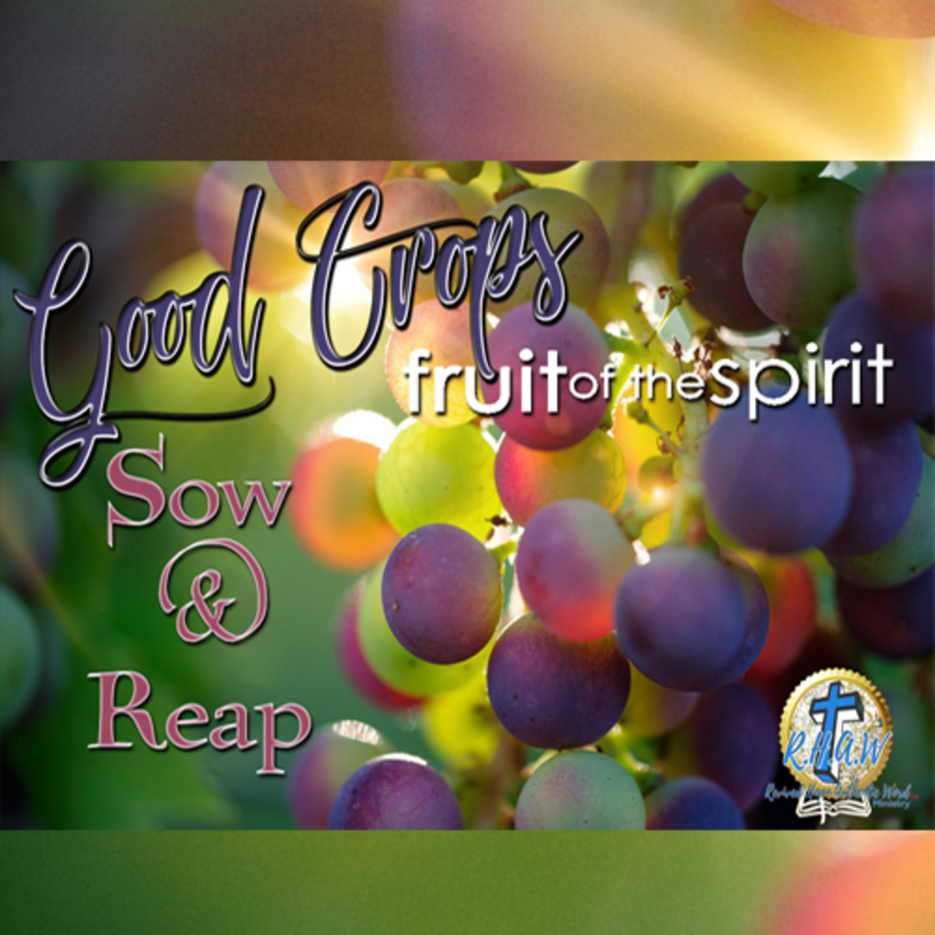 Harvesting Good Crops In Our LIves: Sowing and Reaping