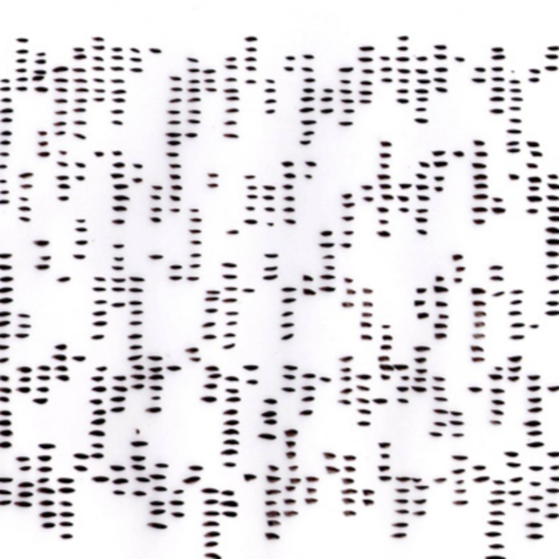 Imprisoned Codes