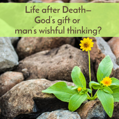 Life after Death—God's gift or man's wishful thinking?