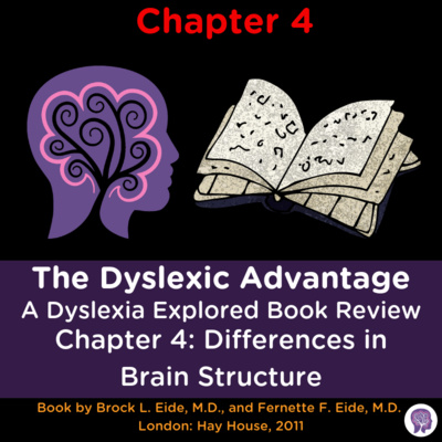 """#23 Dyslexic Advantage"""" CH4 Review: Are Dyslexia and Autism opposite ends of the spectrum? """""""