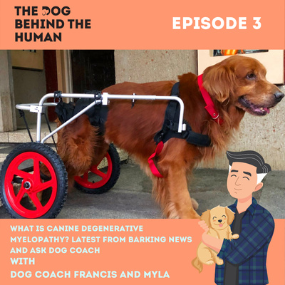 Ep. 3: What is Canine Degenerative Myelopathy? Latest from Barking news and Ask Dog Coach