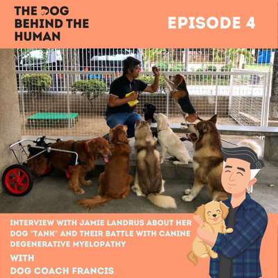 """Ep. 4: Interview with Jamie Landrus about her dog """"Tank"""" and their battle with Canine Degenerative Myelopathy"""