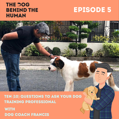 Ep. 5: Ten (10) Questions to Ask Your Dog Training Professional