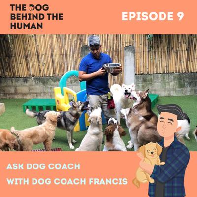 Ep. 9: Ask Dog Coach