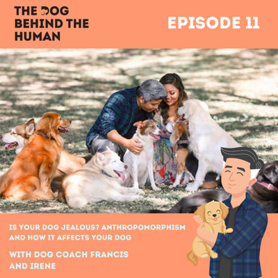 Ep. 11: Is Your Dog Jealous? Anthropomorphism and How It Affects Your Dog