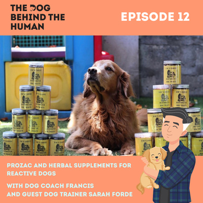 Ep. 12: Prozac and Herbal Supplements For Reactive Dogs With Guest Dog Trainer Sarah Forde