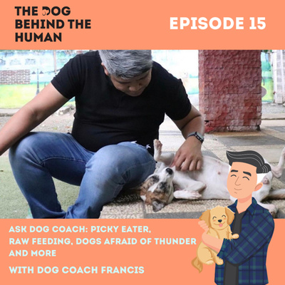 Ep. 15: Ask Dog Coach: Picky Eater, Raw Feeding, Dogs Afraid of Thunder and More.