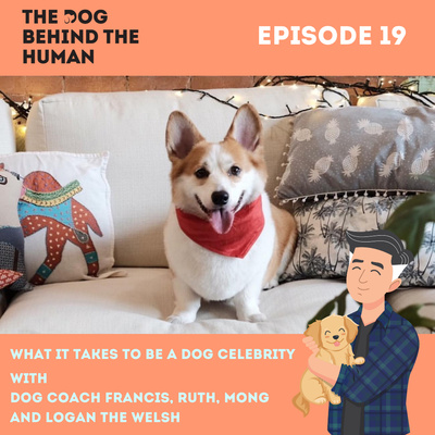 Ep. 19: What It Takes To Be A Dog Celebrity