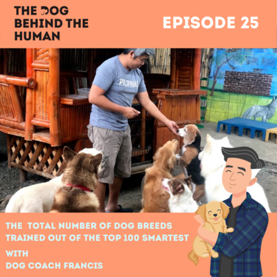 Ep. 25: The Total Number of Dog Breeds Trained Out of The Top 100 Smartest
