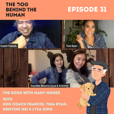 Ep. 31: The Dog With Many Homes