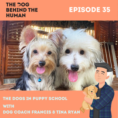 Ep. 35: The Dog in Puppy School