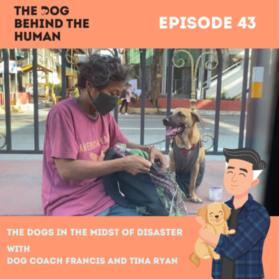 Ep. 43: The Dogs in the Midst of Disaster