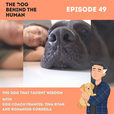 Ep. 49: The Dog That Taught Wisdom