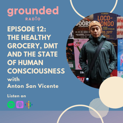 The Healthy Grocery, DMT and the State of Human Consciousness