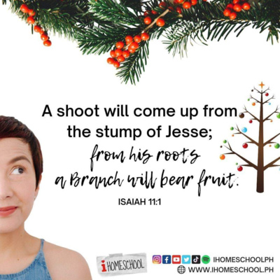 What is a Jesse Tree ?