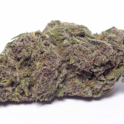 Mr  Sativa Reviews Purple Urkle from Rise Amherst by I am Cannabis