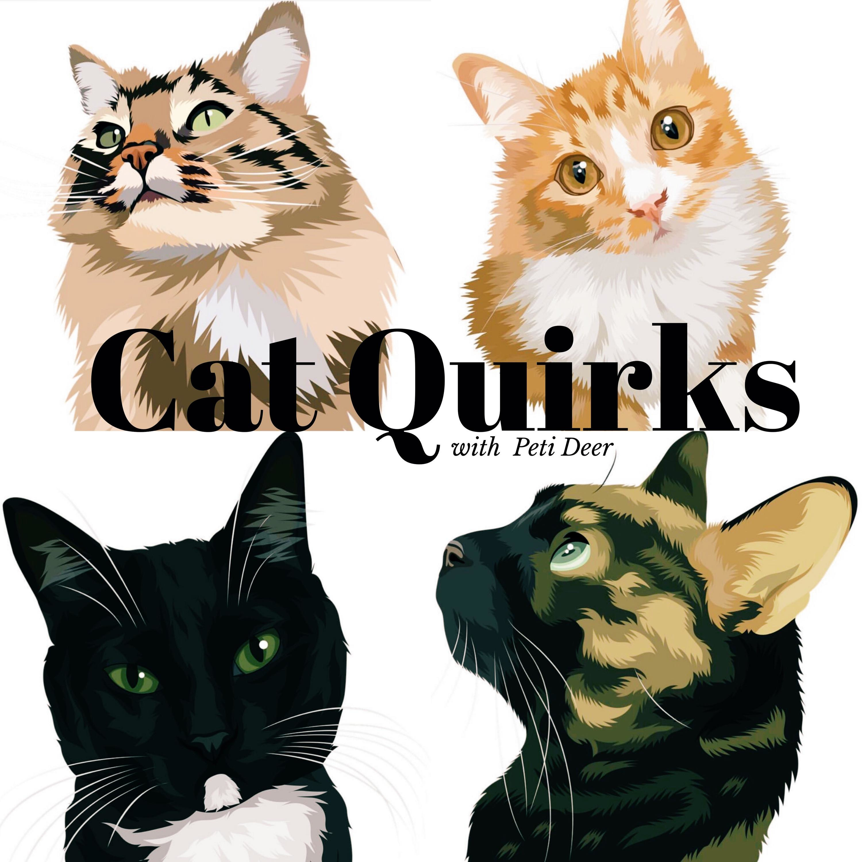 Cat Quirks Podcast - Listen, Reviews, Charts - Chartable