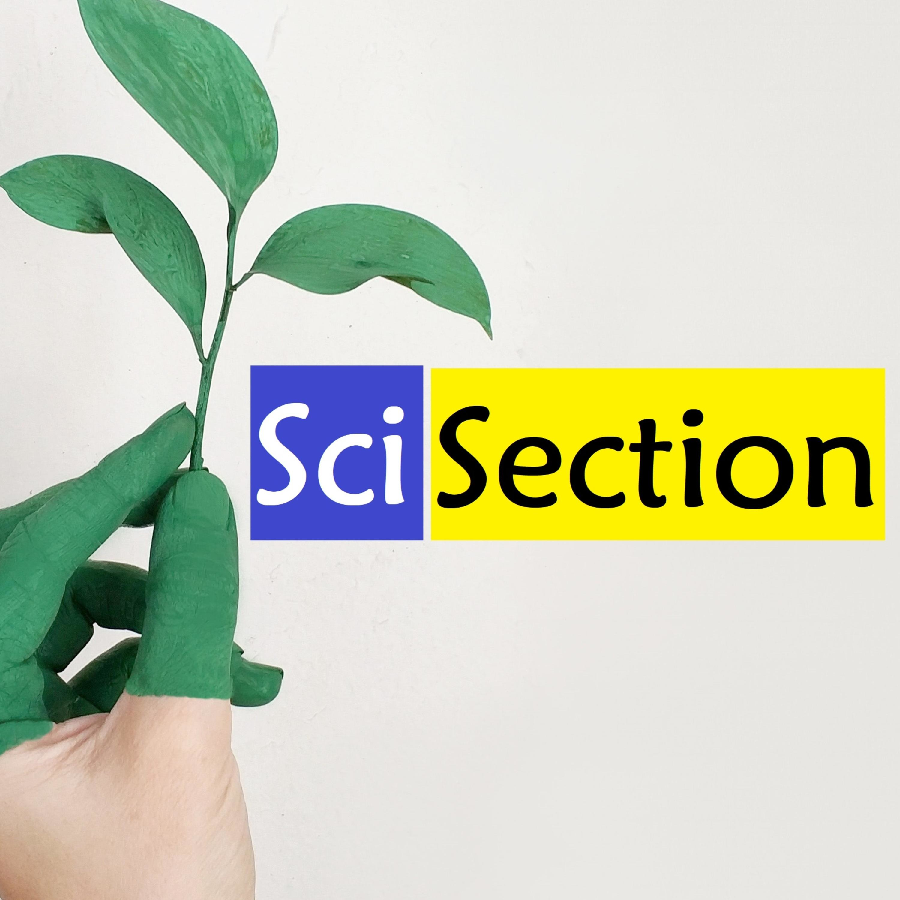 Sci-Section
