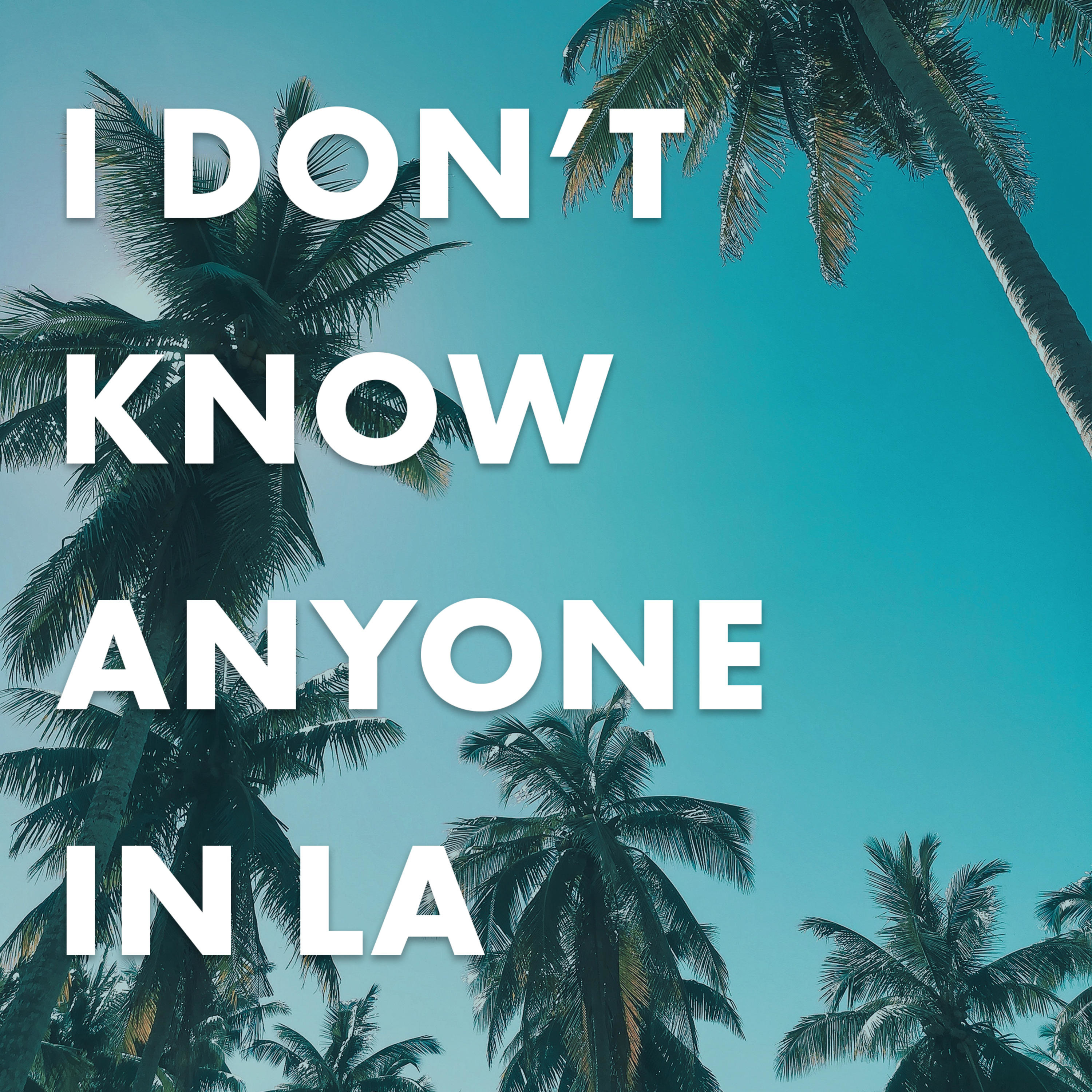 I Don't Know Anyone In LA