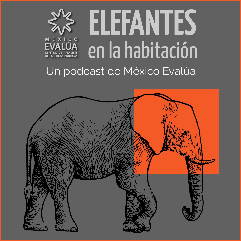 Elefantes en la habitación