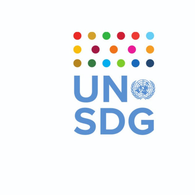 Country Business Strategy Podcast - United Nations Development Coordination Office