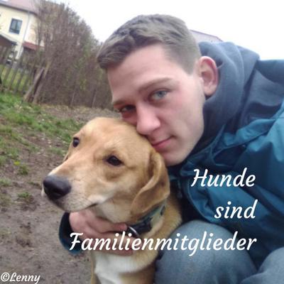 Hunde sind Familienmitglieder
