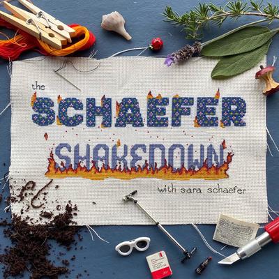 The Schaefer Shakedown