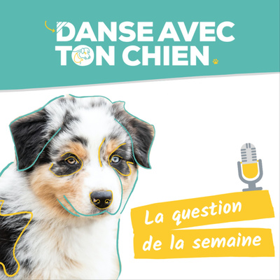 Danse avec ton chien : éducation canine bienveillante - clicker training - dog dancing