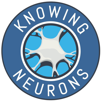 Knowing Neurons