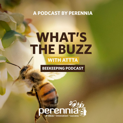 What's the Buzz with ATTTA Beekeeping Podcast