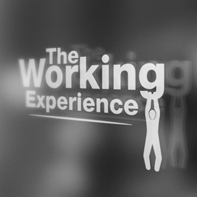 The Working Experience